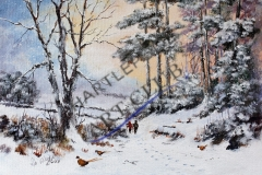 Winter-Walk-by-Rob-Wilson
